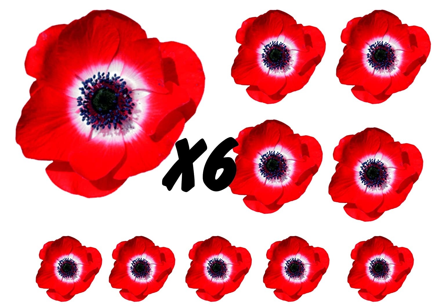 Poppies Flower Decals Car Stickers Graphics Nursery Wall Window Decorations Art 10 Pack (10) WaterShed Designs