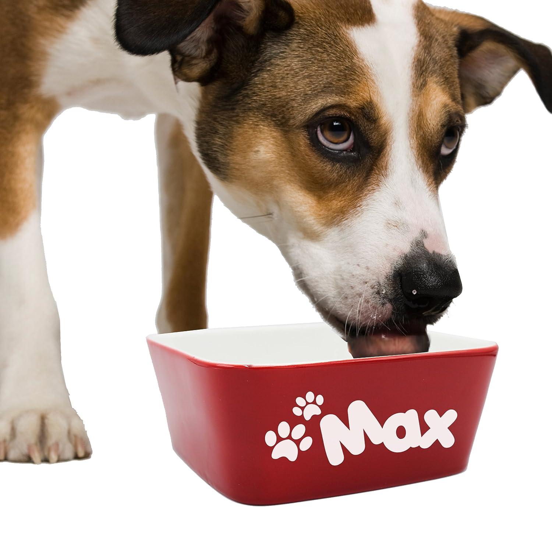 edb6b71e130a Amazon.com : Custom Personalized Pet Bowl Gift - Engraved Dog and Cat Bowls  - Monogrammed Ceramic Dish (Large - 7
