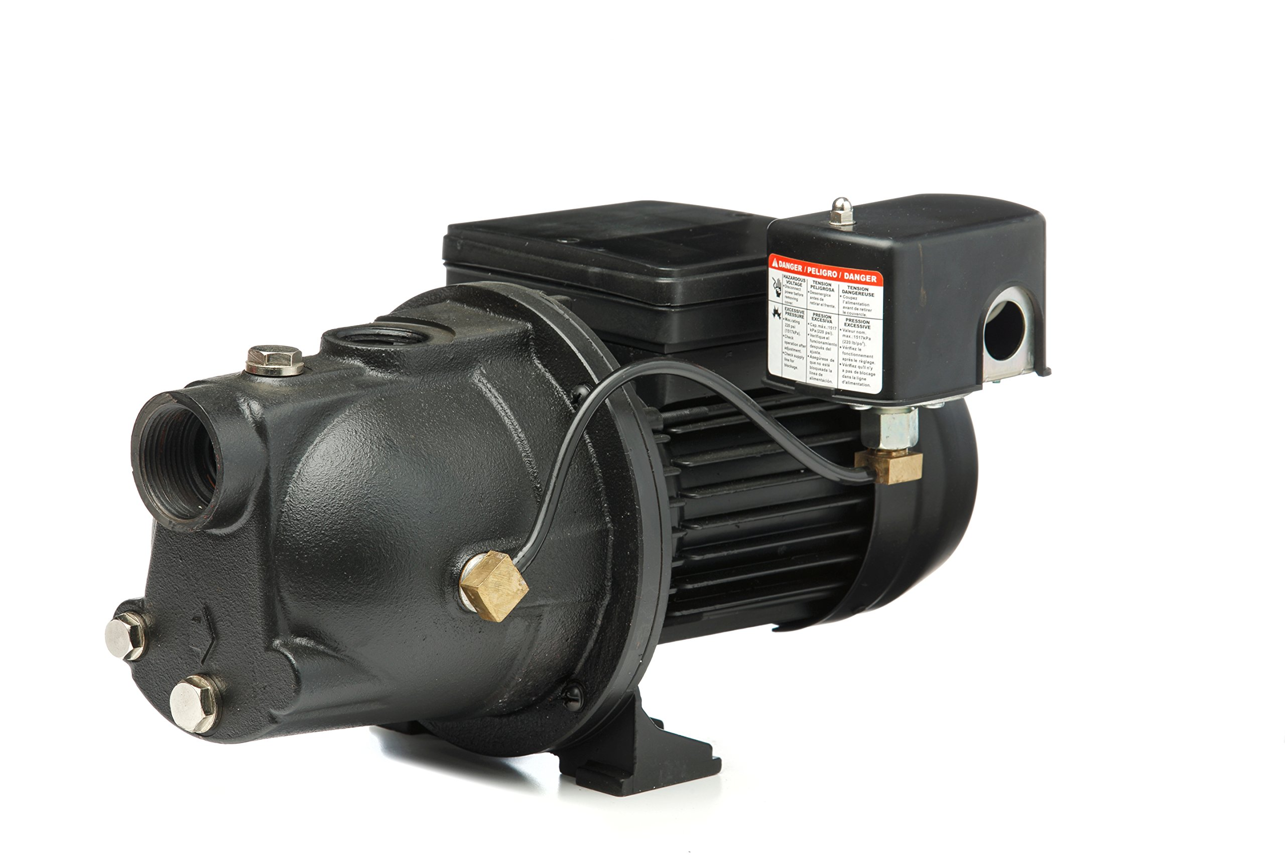 Red Lion PWJET50 Cast Iron Shallow Well Jet Pump Wells up to 25 Feet by Red Lion