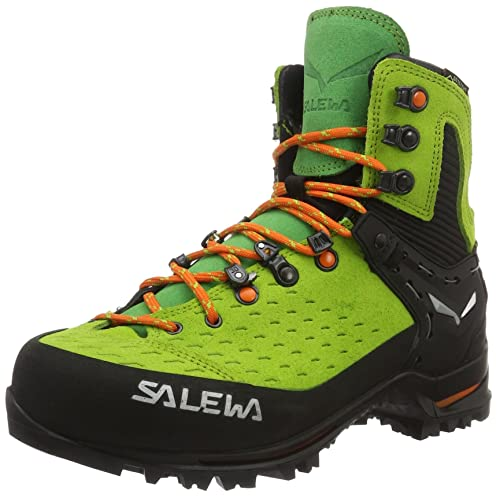 Salewa Unisex-Erwachsene Un Vultur Gore-Tex Trekking-& Wanderhalbschuhe