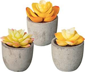 3 Piece Yellow Decor Artificial Succulent Plants in Grey Pots Realistic Greenery Mini Potted Faux Plant Arrangements | Home Decor, Office Room, Dorm, Bathroom Restroom, Kitchen Table Centerpieces