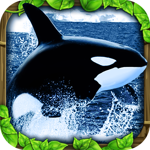 Best orca whale app to buy in 2019