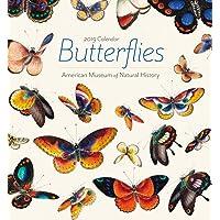 Butterflies 2019 Mini Wall Calendar