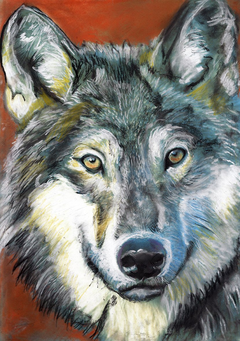 Colorful Wolf Art Print, Wolf Pastel Painting, Wolf Gift, Wolf Wall Art, Wolf Art Decor hand signed.