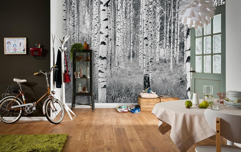 Komar, papel tapiz con mural «árboles de bosque en blanco y negro» XXL4 023 de 368 x 248 cm,blanco/blancuzco (paquete de 4) papel tapiz con mural «árboles de bosque en blanco y negro» XXL4 023 de 368 x 248 cm XXL4-023