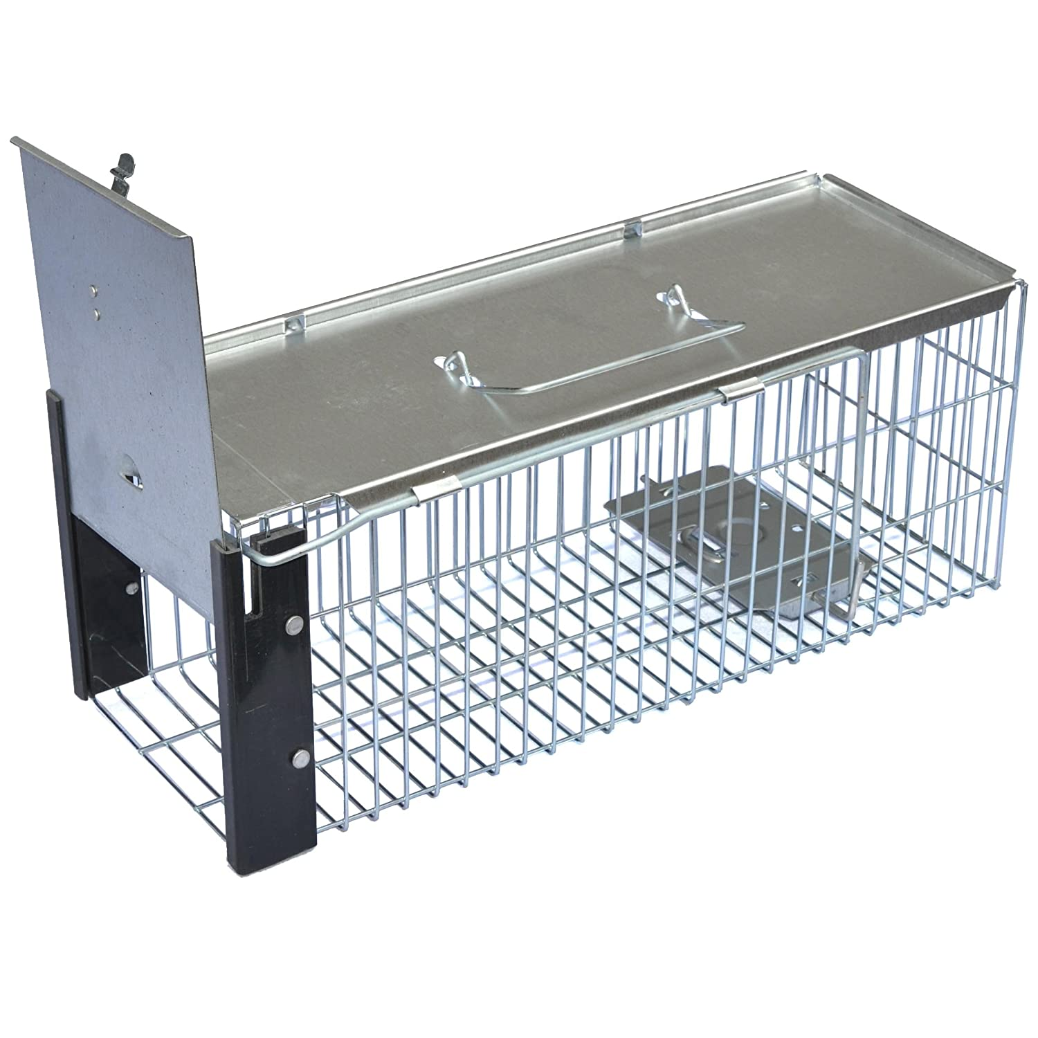 Easipet Humane Rat Trap, Heavy Duty Metal Live Vermin or Rodent Catcher