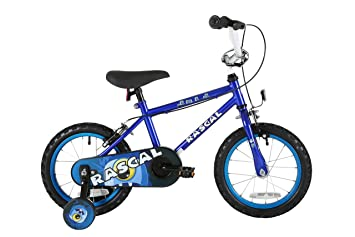 Sonic Rascal Kids Kids Bike Blue 1 Speed Colour Cordinated Spoked