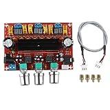 HALJIA TPA3116D2 2 x 50W + 100W 2.1 Channel Digital Subwoofer Power Amplifier Board DC12V-24V