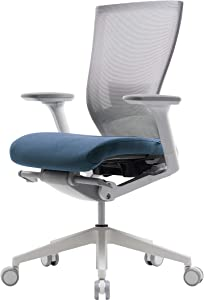 SIDIZ T50 Highly Adjustable Ergonomic Office Chair (TNB500LDA): Advanced Mechanism for Customization/Extreme Comfort, Ventilated Mesh Back, Lumbar Support, 3D Arms, Seat Slide/Slope (Blue)