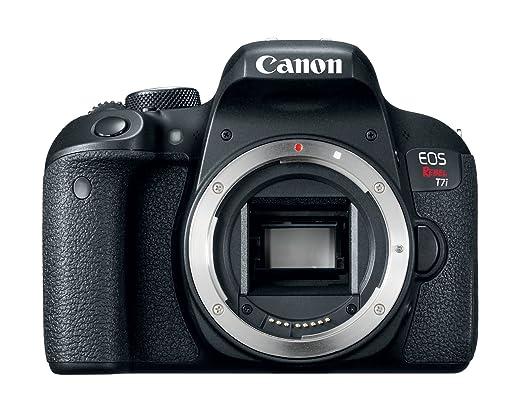 Amazoncom Canon Eos Rebel T7i Body Camera Photo