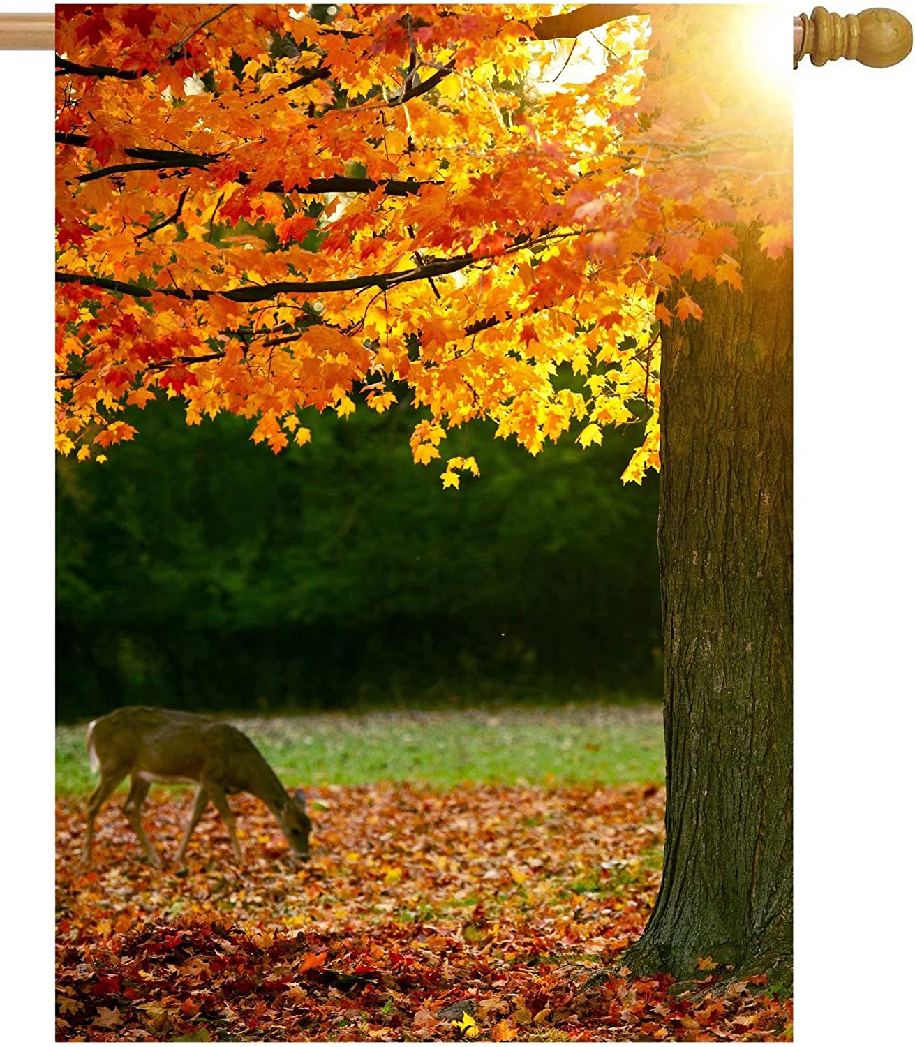 Shinesnow Autumn Forest Maple Tree Fall Leaves Animal Deer Golden Sunlight Seasonal House Flag 28 X 40 Double Sided Polyester Welcome Yard Garden Flag Banners For Patio Lawn Home Outdoor