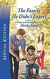 The Family He Didn't Expect (The Stone Gap Inn Book 1)
