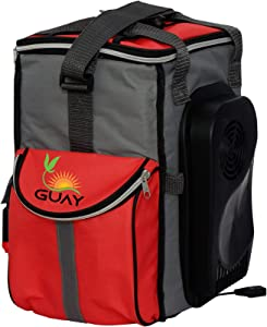 Guay Insulated Thermal Bag Cooler and Warmer – Portable Thermoelectric Car Fridge Beverage Chiller and Food Heater – 20 Cans /13 Liters / 14-Quart Capacity – 12V DC for Vehicles Outlet Only