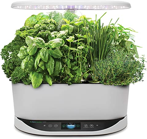 Amazon Com Aerogarden Bounty Indoor Hydroponic Herb Garden White Garden Outdoor