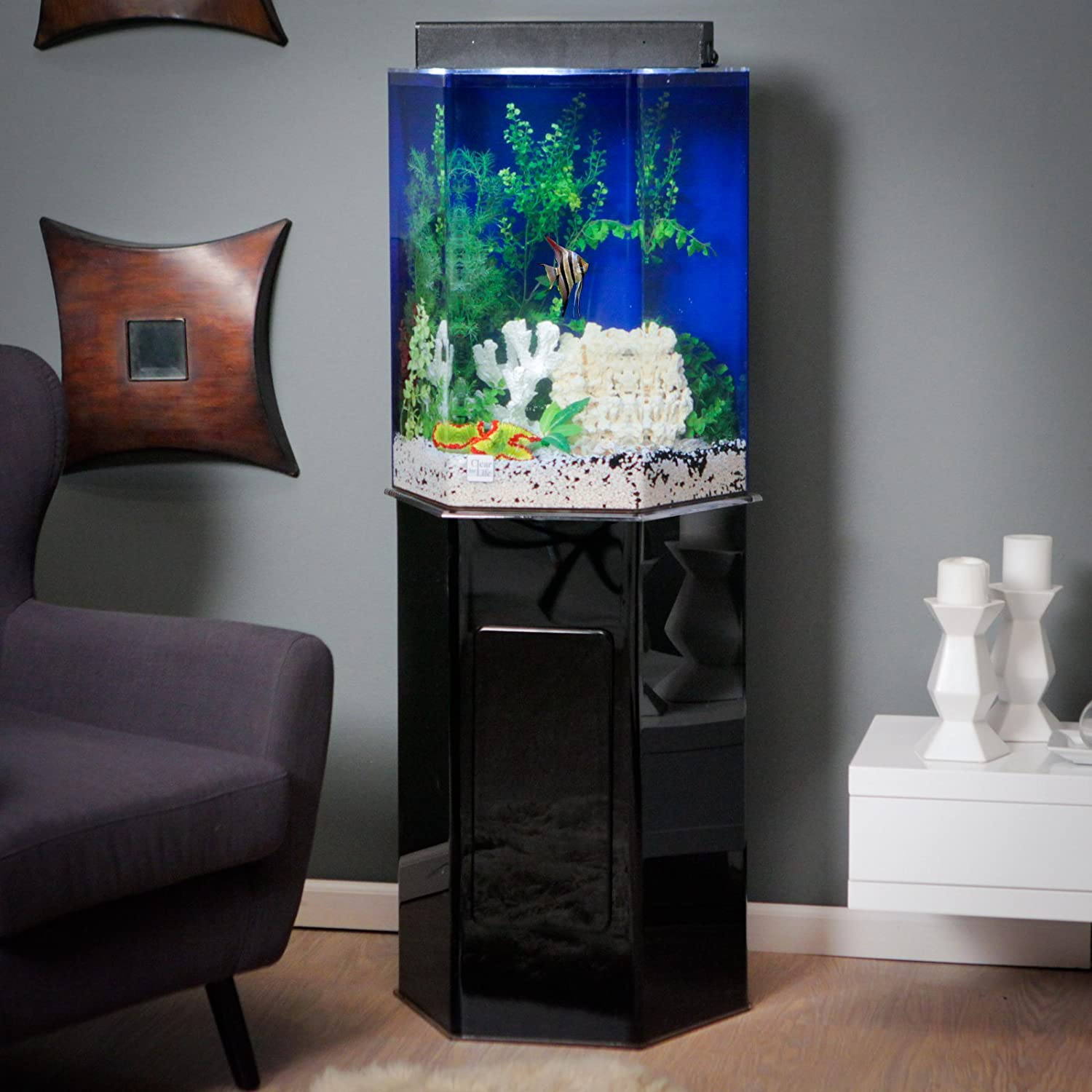 Amazon.com : Clear For Life 95 Hexagon Aquarium   Clear Back : Pet Supplies