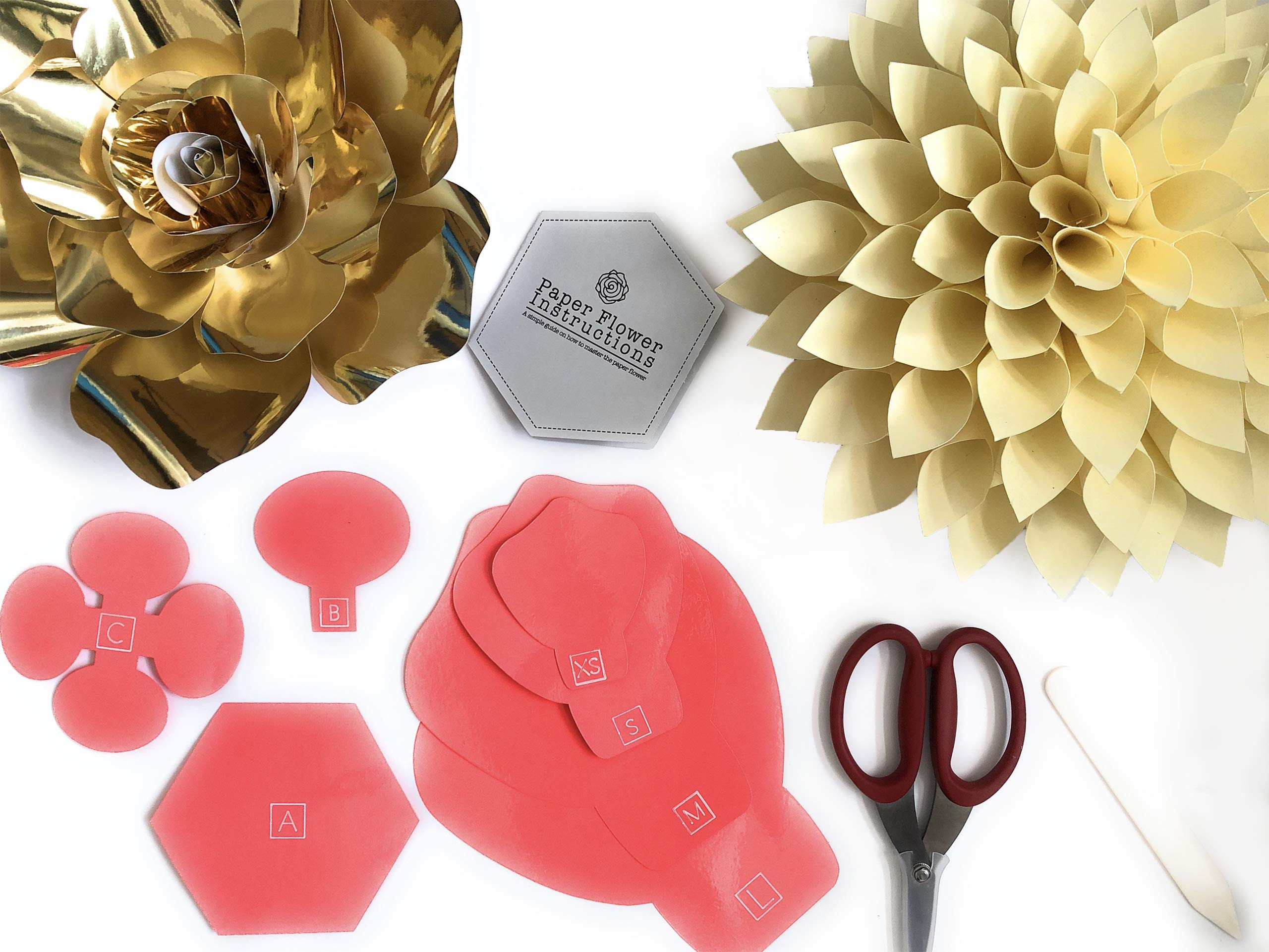 Paper Flower Template Kit - DIY Wall Decorations - Instructions Included - 8 Piece Set by retail parity (Image #2)