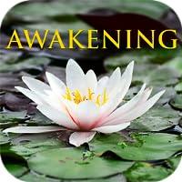 The Book of Awakening