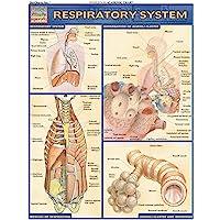 Respiratory System (Quick Study: Academic)