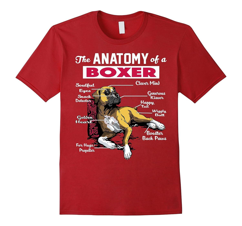Amazon.com: Anatomy of a Boxer Dog shirt - Funny Shirt for Boxer ...