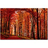The Red Way by Philippe Sainte-Laudy, 22x32-Inch Canvas Wall Art