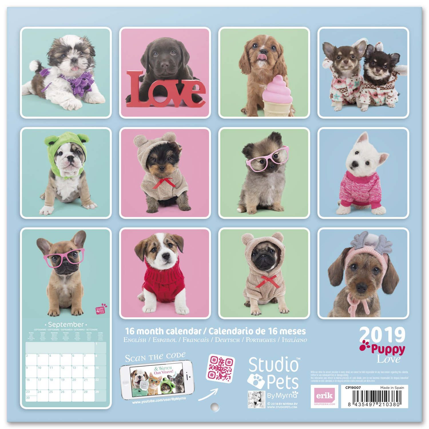Amazon com : Grupo Erik editores Studio Pets - Calendar with