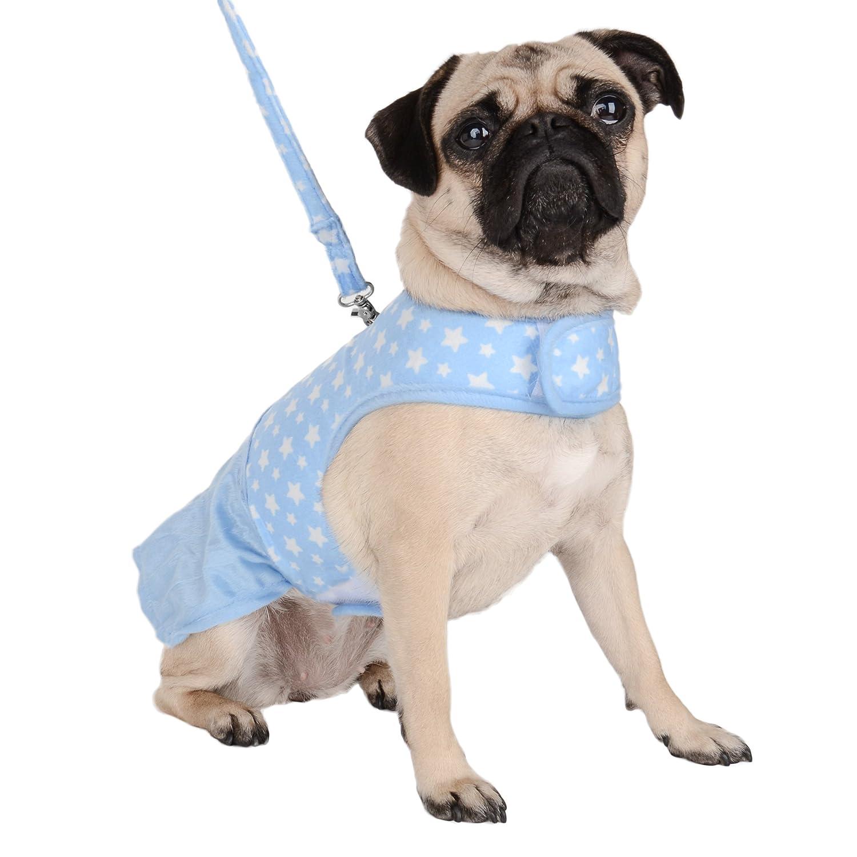 bluee Medium bluee Medium CueCuePet CCPDressHarnessblueSTRM Star Choke Free Harness Dress with Leash, bluee, Medium
