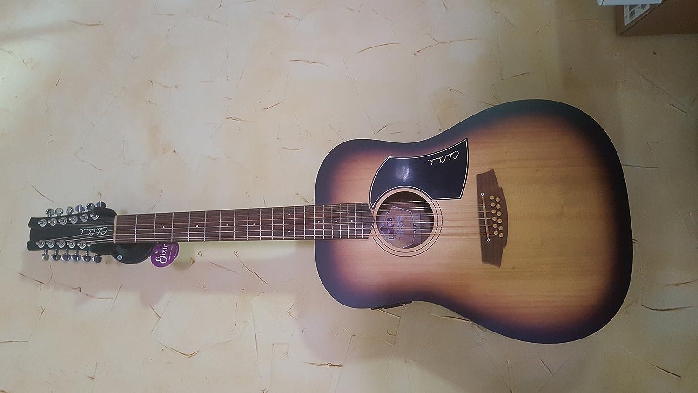 COLE CLARK Fat Lady 1 FL1A 12 BM - Guitarra electroacústica ...