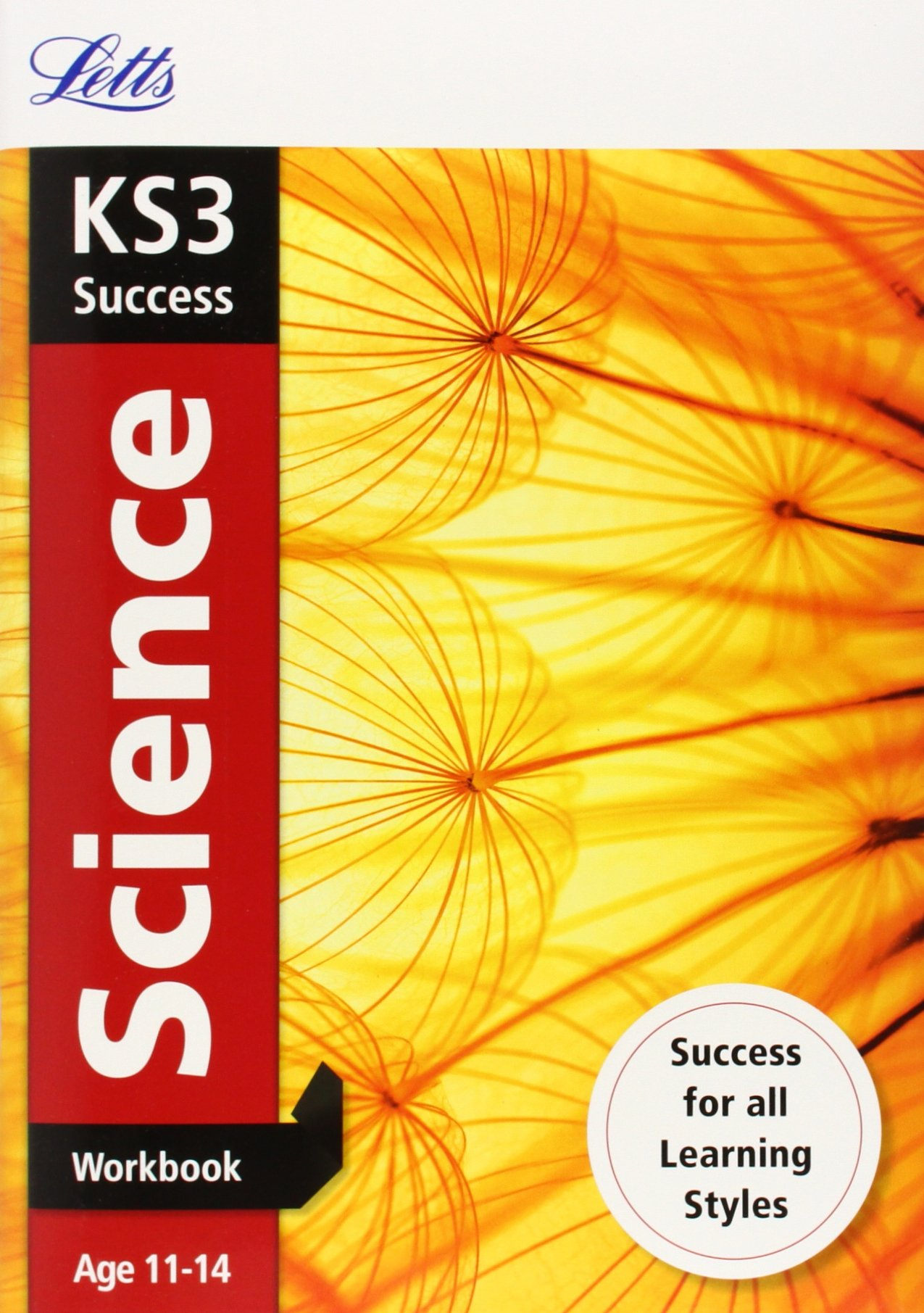 Download Letts Key Stage 3 Revision ― Science: Workbook PDF