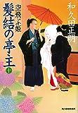 髪結の亭主(十) 空飛ぶ姫 (時代小説文庫)