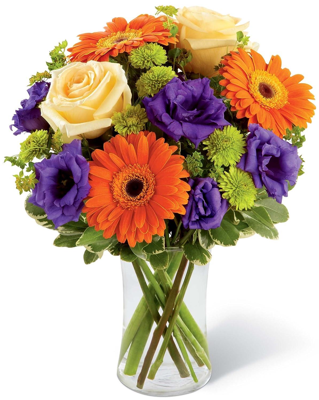 The Hypnotically Playful Bouquet Grower Direct