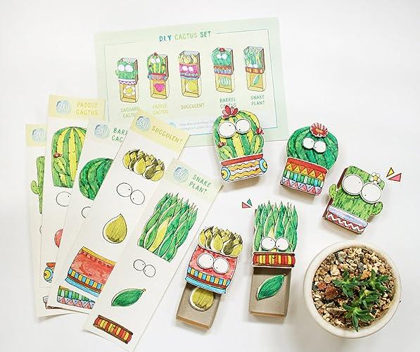 Amazon diy cactus matchbox cards set of 5 do it yourself diy cactus matchbox cards set of 5 do it yourself plant greeting cards m4hsunfo