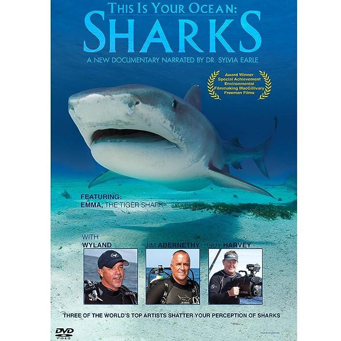 The Best Shark Dr Motion
