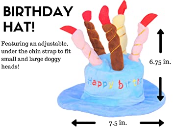 Dog Birthday Party Decorations Kit By Blast In A Box Pink Hat