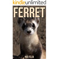 Ferret: Children Book of Fun Facts & Amazing Photos on Animals in Nature - A Wonderful Ferret Book for Kids aged 3-7