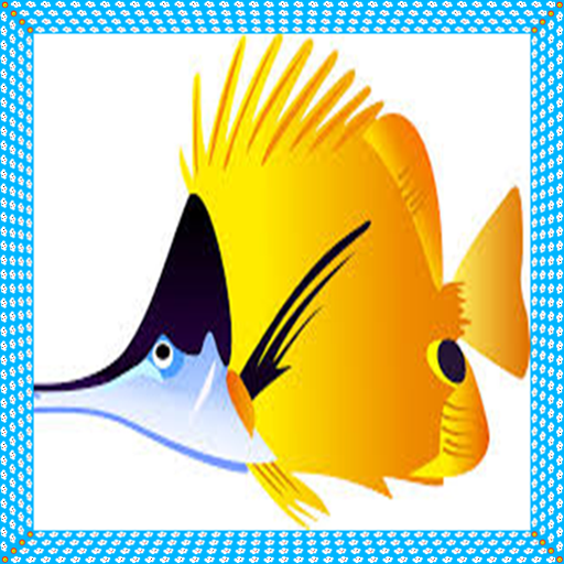 Kids Fish (Fish For Kids)