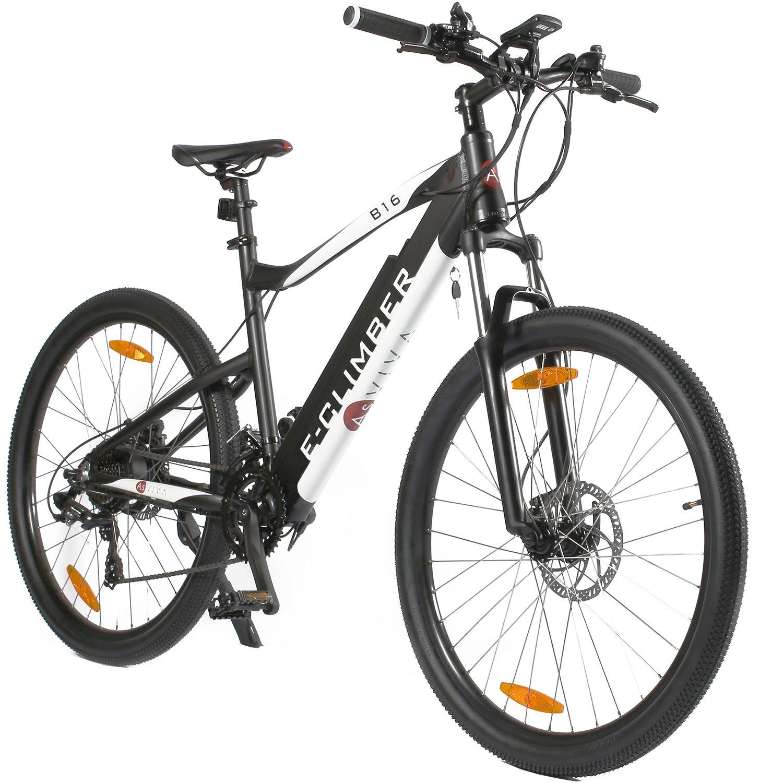 e-bike mtb