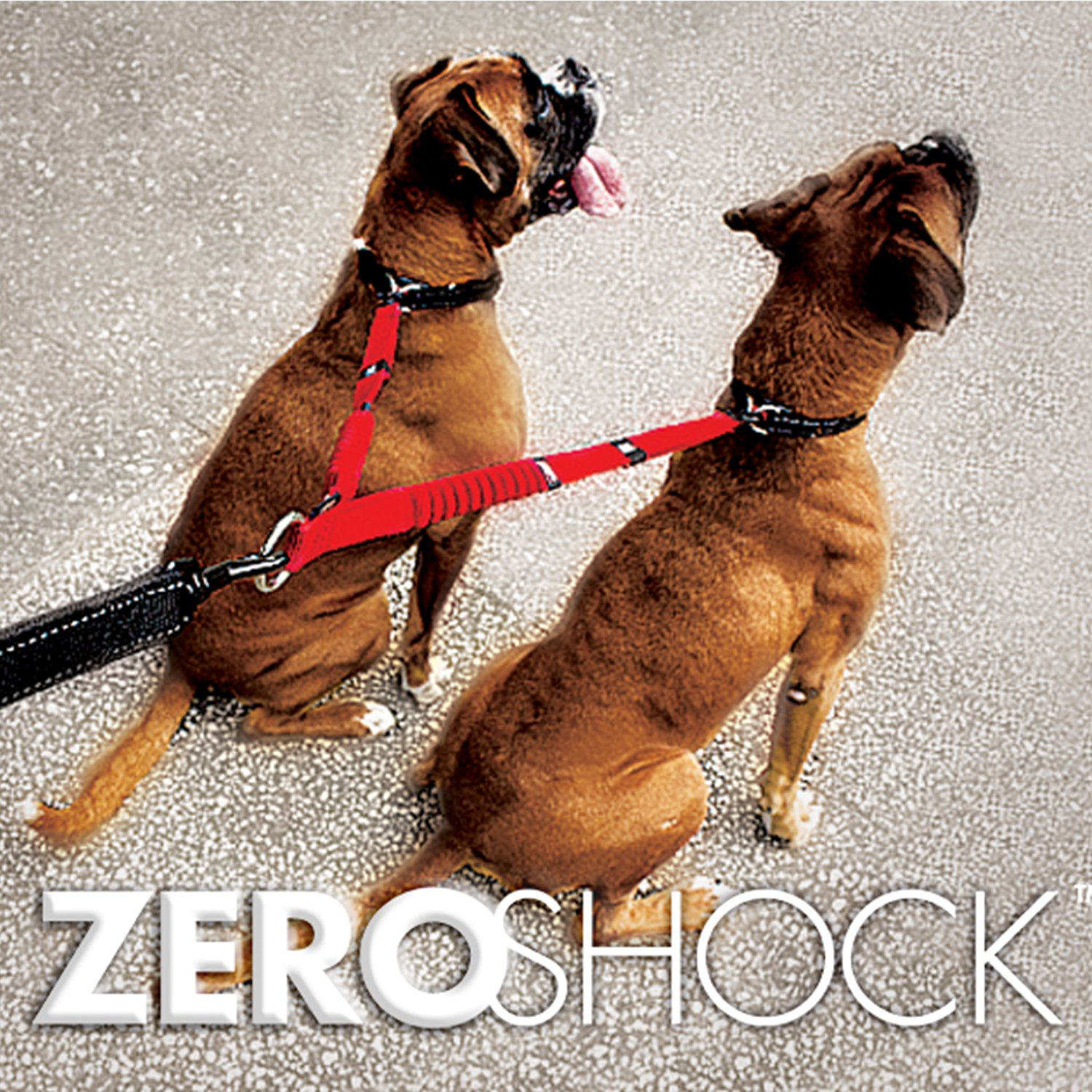 EzyDog Zero Shock Coupler Bungee Dog Leash - Walk Two Dogs with Ease and Comfort - Two Traffic Handles and Super Strength Metal Attachment Points for Control and Safety (24'', Black)