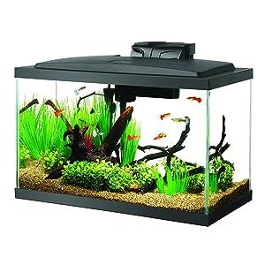 Aqueon 10 Gal LED Aquarium