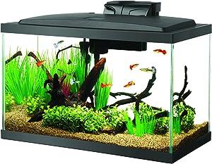 Aqueon 100527256 Aquarium