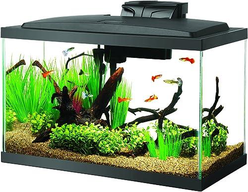 Aqueon-10-Gallon-Shrimp-Tank-Aquarium-LED-Kit