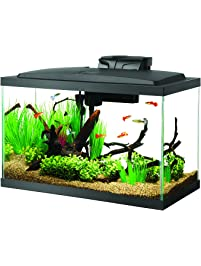 Aqueon 10 Gal LED Aquarium Kit