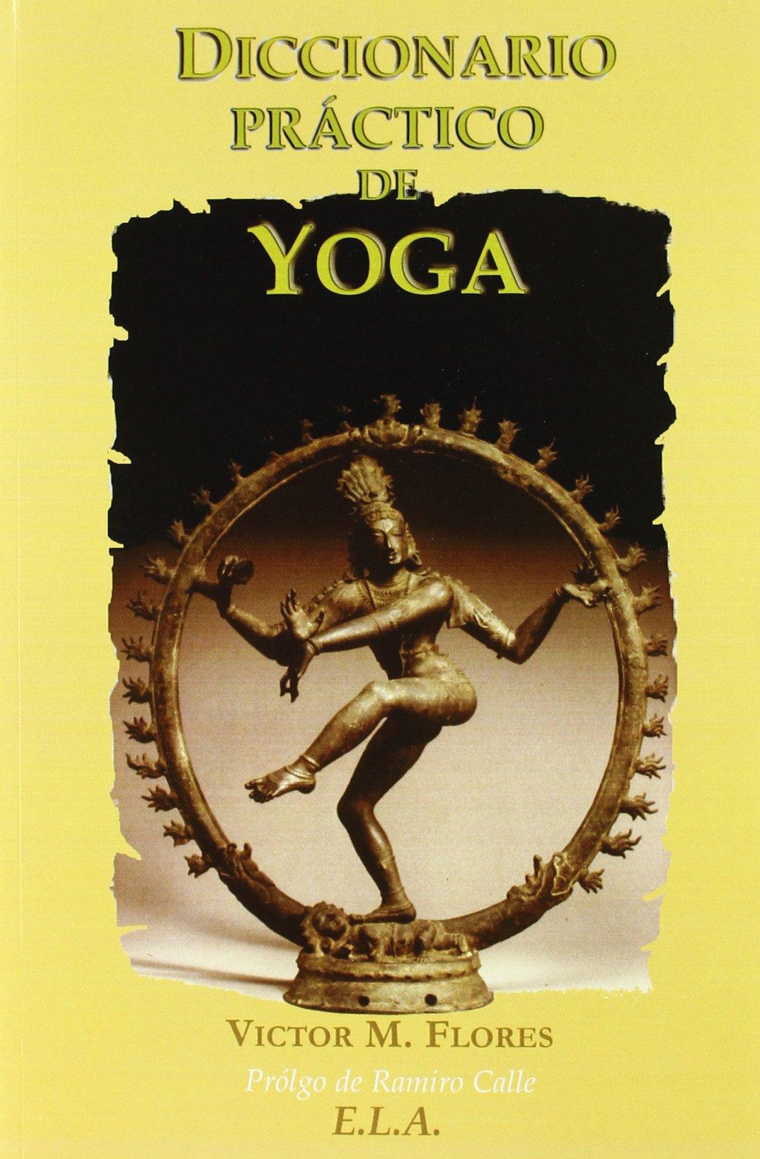 Diccionario práctico de Yoga: Víctor Martínez Flores ...