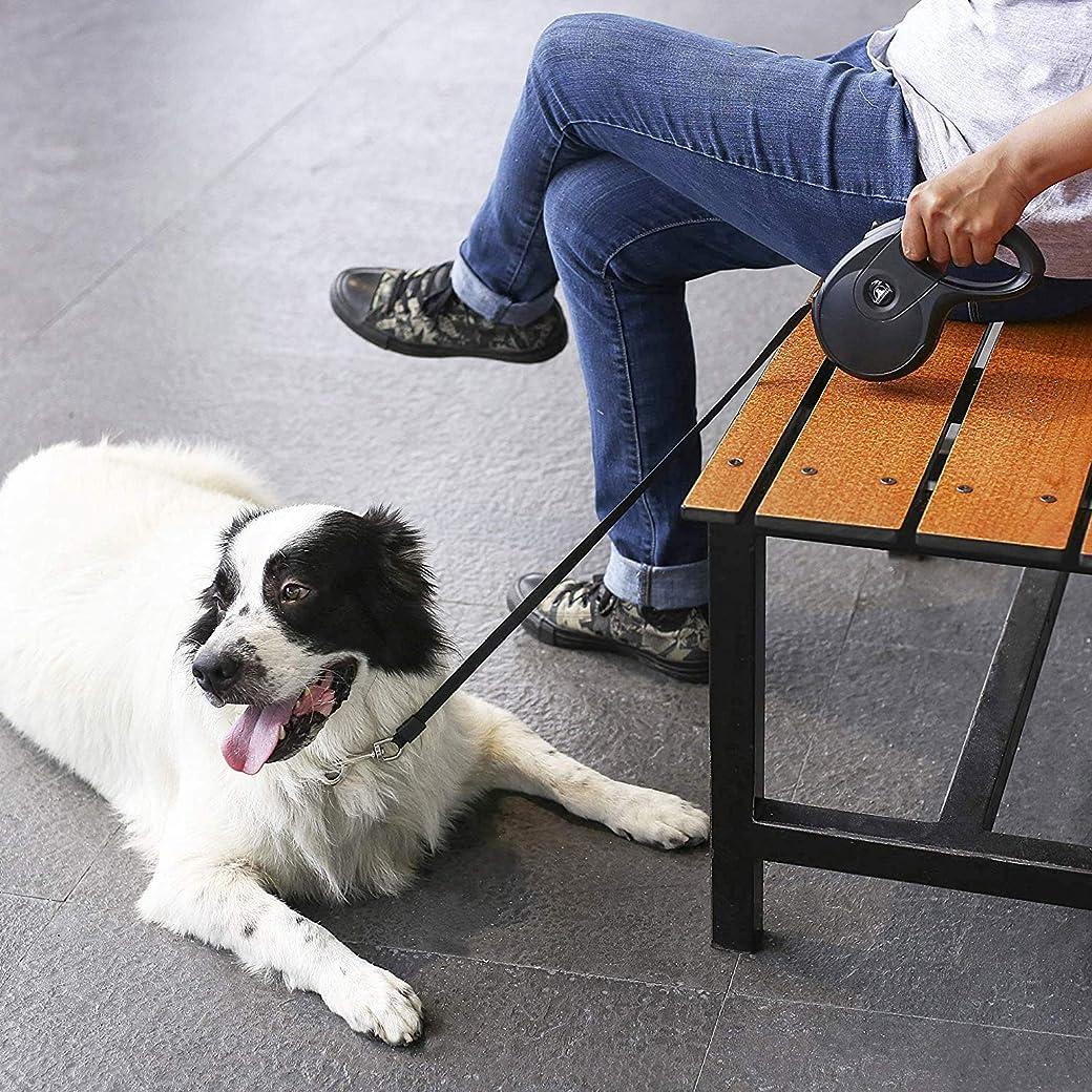 PetTech Correa Extensible para Perro de 16 pies