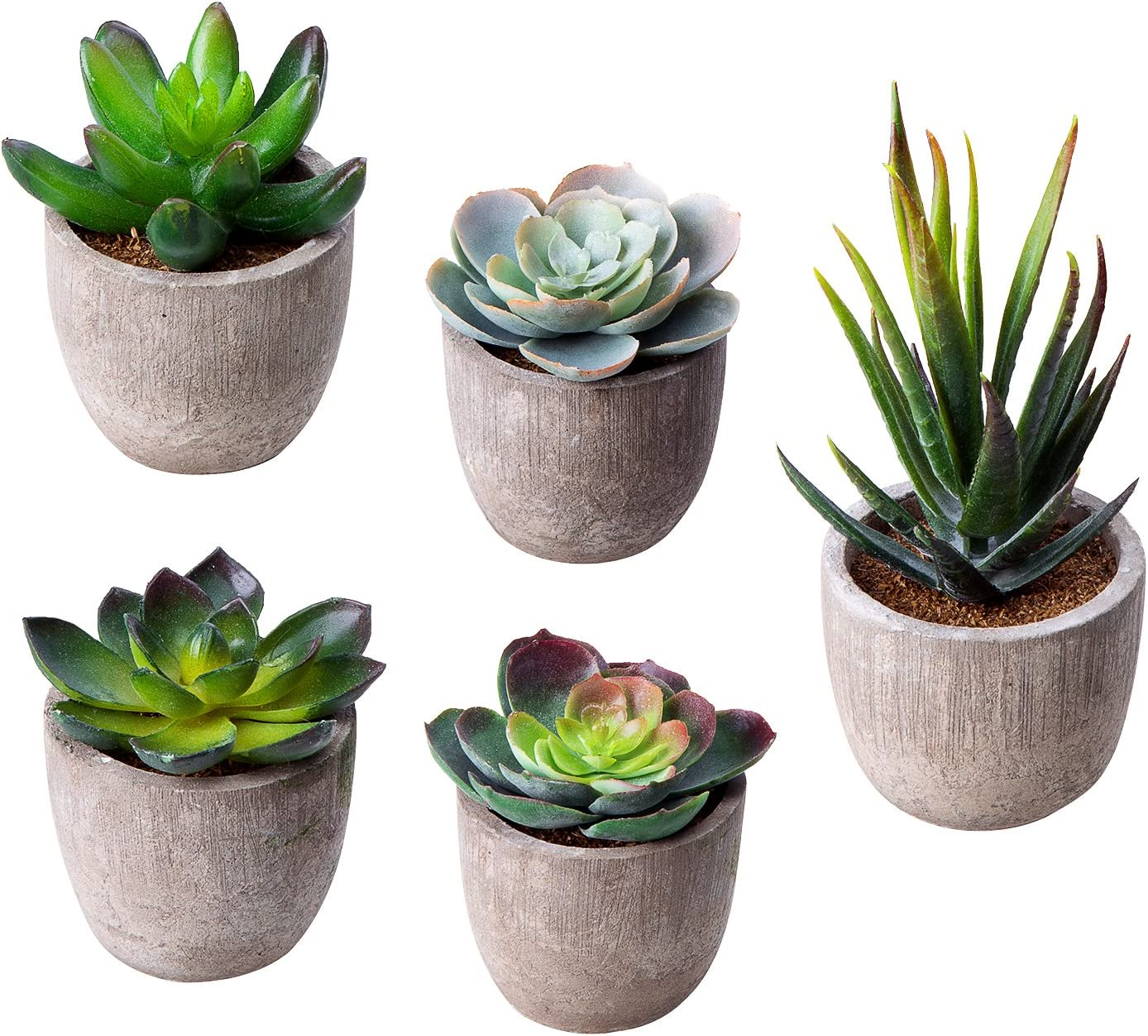 Amazon Com Moonla Artificial Succulent Plants Assorted Decorative Faux Succulent Potted Fake Cactus Cacti Plants With Gray Pots Set Of 5 Home Kitchen