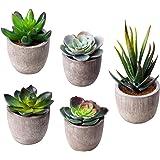 MoonLa Artificial Succulent Plants, Assorted Decorative Faux Succulent Potted Fake Cactus Cacti Plants with Gray Pots, Set of 5