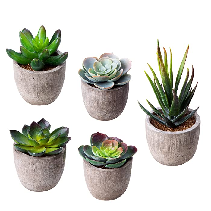MoonLa Artificial Succulent Plants, Assorted Decorative Faux Succulent Potted Fake Cactus Cacti Plants with Gray Pots, Set of 5