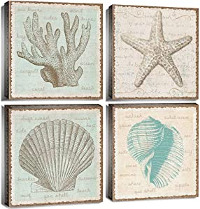 "Seashell Wall Decor Beach Theme Bathroom Canvas Art Ocean Coral Marine Paintings for Home Decoration Modern Rustic Sea Starfish Seascape Prints Pictures Artwork Framed Ready to Hang 12x12"" 4 Panels"