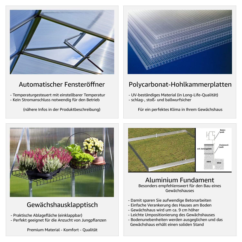 GFP EDINA2 Gew auml chshaus Wahlweise Mit Fundament Aus Aluminium 256x153cm Formstabil Und ...