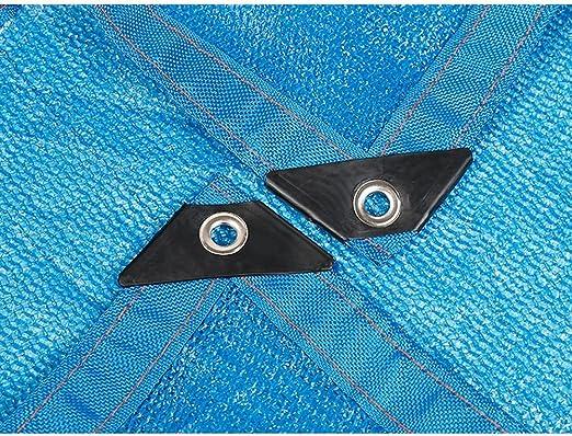 gr/ö/ße : 2 * 1M Plane Verschiedene Spezifikationen Schatten Netze blau Schatten Netze fleischigen Schatten Netze Sonnenschutznetz Isolierung Netze Schutznetz