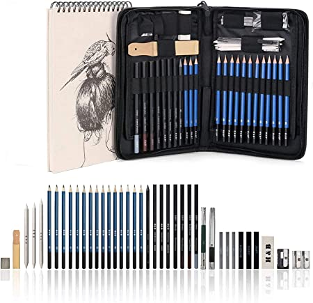 AGPtek 41pzas Set de Dibujo para Hacer Bocetos, Estuche de Lápices Gráfito con Cuaderno de Bocetos(60 Hojas), Incluye Tizas Borradores etc, Perfecto para Viaje, Excelente para Principantes: Amazon.es: Hogar